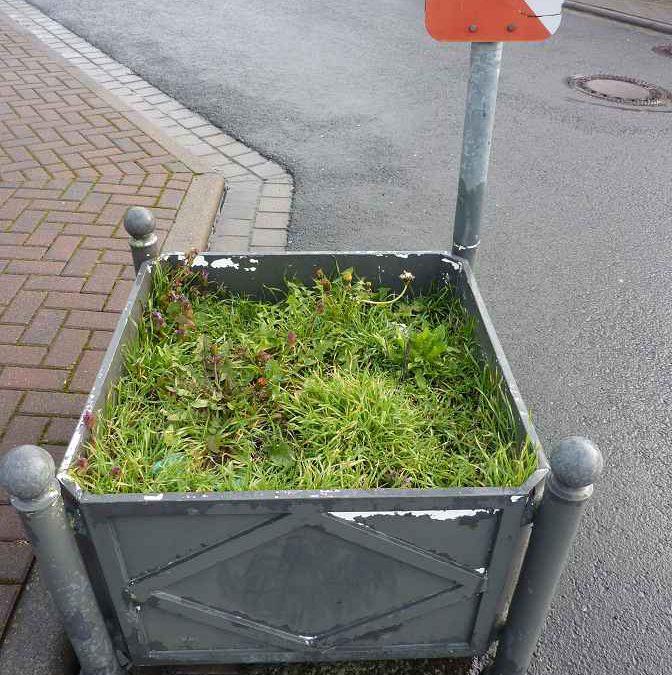 Pflege der Grünanlagen in Kubach